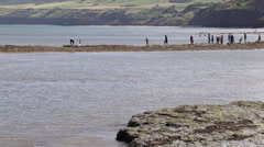 Man crab fishing, and various people walking on a sandbank/sandbar. Stock Footage