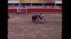 1962: a bull charging and attacking a bull fighter in a stadium SAN PEDRO Stock Footage