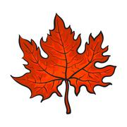 Beautiful red colored autumn maple leave isolated on white background Stock Illustration