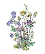 Sketch of the wildflowers on a white background Stock Illustration