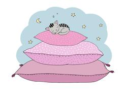 Beautiful pillows and cute cat Stock Illustration
