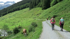 Hiker walking along the Schoenachtal valley at Zillertal valley in Austria Stock Footage