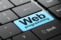 Web design concept: Web Programming on computer keyboard background Stock Illustration