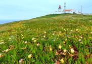 Lighthouse on Cape Roca, Portugal. Stock Photos