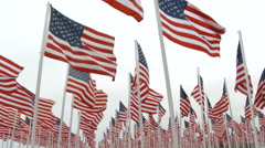 Hundreds of USA Flags Blowing In The Wind Stock Footage