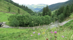 Zillertal valley landscape with meadow, barn and stream. Located at Schoenach Stock Footage