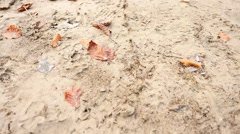 Following of drawed line in wet mud on the ground. Wet clay, leaves and mess. Stock Footage