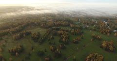 Aerial view of amazing sunrise. Flying over a sunny trees. Stock Footage