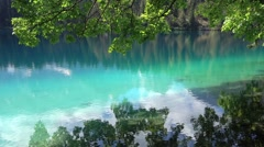 Eco concept green leaves over water Stock Footage