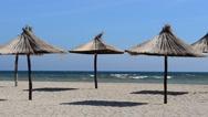 Straw umbrellas on the beach. Stock Footage