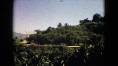 1962: view mountain huge valley shade tree outskirts MEXICO Stock Footage