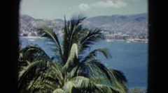1962: view of a tropical vista across an ocean inlet with a large palm tree  Stock Footage