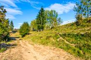 Path on hillside meadow in mountain Stock Photos