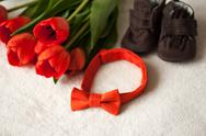 Bouquet of red tulips and a bow tie Stock Photos