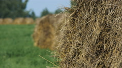 Landscape with Straw Bales in Summer Stock Footage