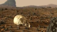 Alien Skull Found Stock Footage