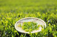 Japanese tea Stock Photos