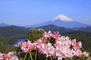 Kanagawa Prefecture, Japan Stock Photos