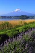 Yamanashi Prefecture, Japan Stock Photos