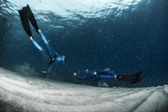 Freedivers in the sea Stock Photos