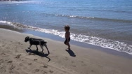 Kid chases a dog trying to treat with sand Stock Footage
