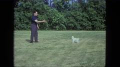 1963: dog pet play fetch throw man love unique cute MAINE Stock Footage