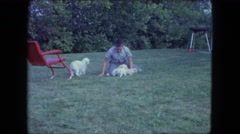 1963: a boy is playing with a dog and some puppies MAINE Stock Footage