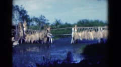 1950: enjoying the view by the lake waiting for the sunset and its glow FLORIDA Stock Footage