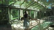 Green rooms Summer Garden Stock Footage