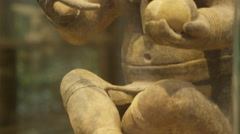 Pre-colombian art in private collection Ecuador- Stock Footage