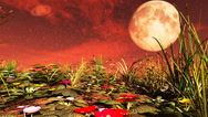 Flowers on Red Planet. 3D rendering. Stock Footage
