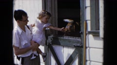 1954: man and young child petting barnyard animal HICKSVILLE, NEW YORK Stock Footage