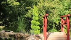 Evergreen Light Green Zen Garden Red Fence Miniature Bridge Stock Footage