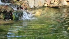 Outdoors Meditative Pure Green Mountain Stream Continuous Flow Stock Footage