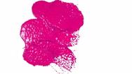 Purple drops falling on white screen slow motion. juice Stock Footage