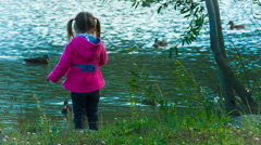 Little girl playing in the park, throwing stones into the water. ducks. Stock Footage