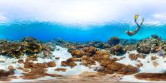 Seamless panorama of the sea floor Stock Photos