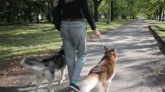Girl model walking in the park with dogs Stock Footage