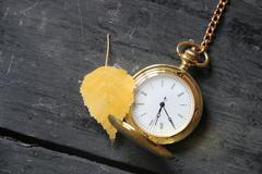 Gold pocket watch and autumn leaf Stock Photos