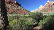 Southwestern ,Zion National park, landscape Stock Footage