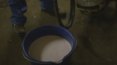 Senior Farmer milking cow in agriculture farm Stock Footage