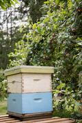 Bee hive in apiary garden Stock Photos