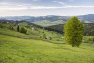 Bukovina Region (Bucovina) landscape at Paltinu, Romania, Europe Stock Photos