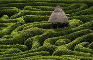 A maze in Glendurgan Garden on the Lizard peninsula in Cornwall, England, United Stock Photos