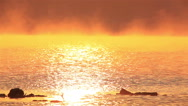 Reflection of  sun in water of  lake and two birds. Beauty of  nature Stock Footage