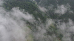 Incredible fog and clouds over the forest. aerial footage Stock Footage