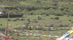 Tibetan ancient flag outside a traditional village Stock Footage