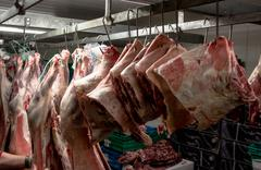 Peeled red meat hanging in the storage room Stock Photos