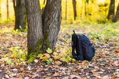 Backpack in the woods concept travel tourism Stock Photos