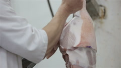 Meat processing in food industry. Production line in meat processing Stock Footage
